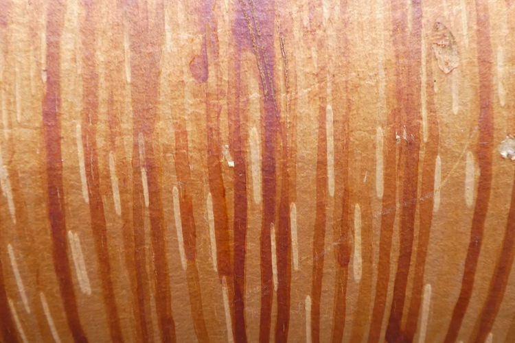 Full Frame Backgrounds Wood - Material Brown Textured  Close-up No People Wood Wood Grain Pattern Indoors  Food And Drink Material Striped Timber Plank Still Life Orange Color Food Natural Pattern Textured Effect Purist No Edit No Filter No Edit/no Filter Birch Bark Birch