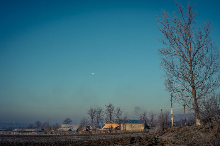 Bare Tree Blue Blue Sky Field Landscape Low Angle View Moon No People Outdoors Panasonic  Sky Vignette Winter