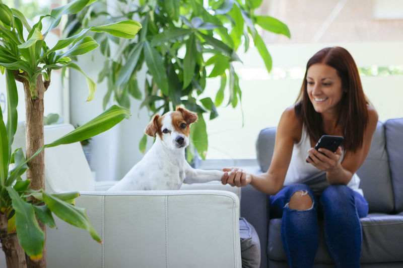Woman holding smart phone while playing with dog on sofa