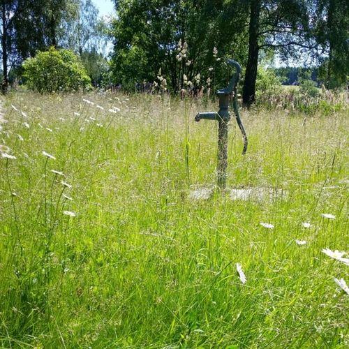 Ups! Bruger vist huset i det svenske alt for lidt. Lawnmowerman Change Sommer Skåne