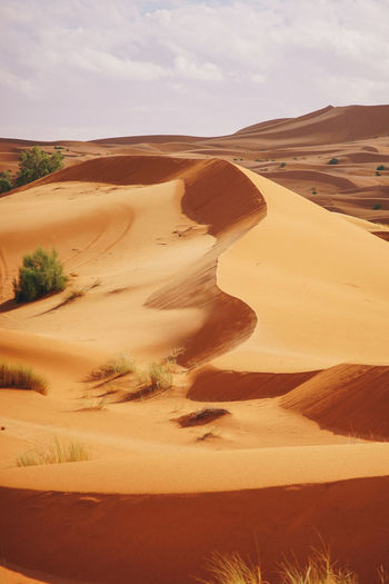 Sahara Desert, Morocco Sand Dune Desert Sand Landscape Environment Scenics - Nature Climate Tranquil Scene Arid Climate Land Tranquility Sky Nature Beauty In Nature Non-urban Scene Day Remote Cloud - Sky No People Travel Destinations Outdoors Atmospheric Sahara Desert Morocco Summer