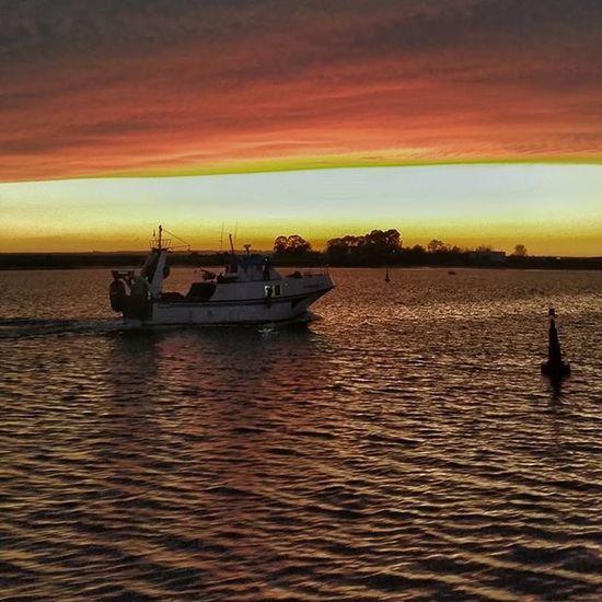 Barco pesquero, regresando de faenar, en la Ría de Huelva. Huelva Andalucía Playa Sol Sunsets Summertime Beach Atardecer Mar Vacaciones Verano Summer Estiu Estaes_huelva