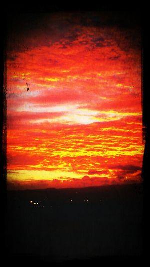 Sunrise Christmas
