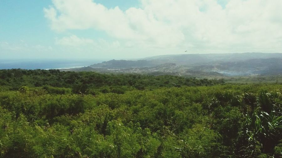 On top of the world Barbados Paradise