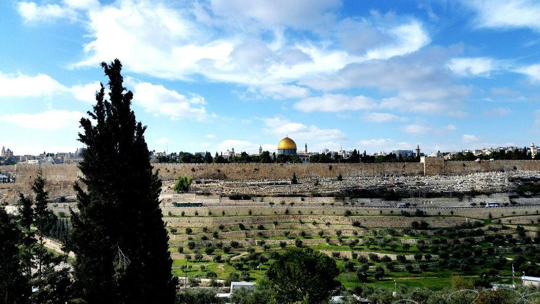 ALAQSA Colors Israel Mesquita Faces In Places