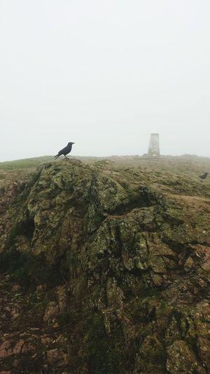 Outdoors Mist Ravens Malvern Hills Sky