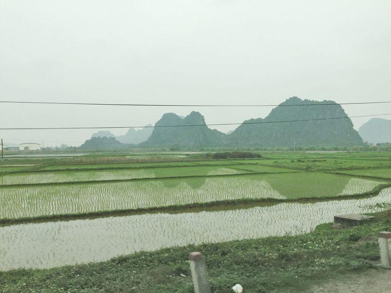 しばらく こちらに......😓 Hanoi Vietnam  Vietnam Project Work Landscape
