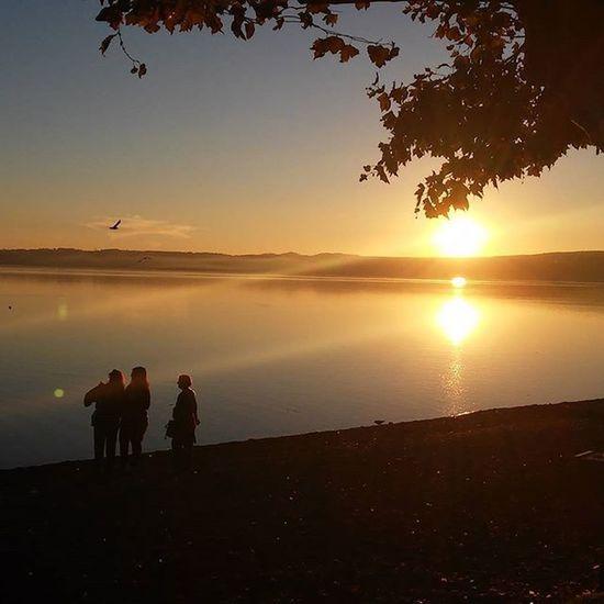 8 novembre 2015 Trevignano Romano Trevignanoromano Lagodibracciano Lake Lago Noeffect Nofilter Italia Tramonto Sunset Sunrays Raggiodisole Nature The Tourist Here Belongs To Me Landscapes With WhiteWall