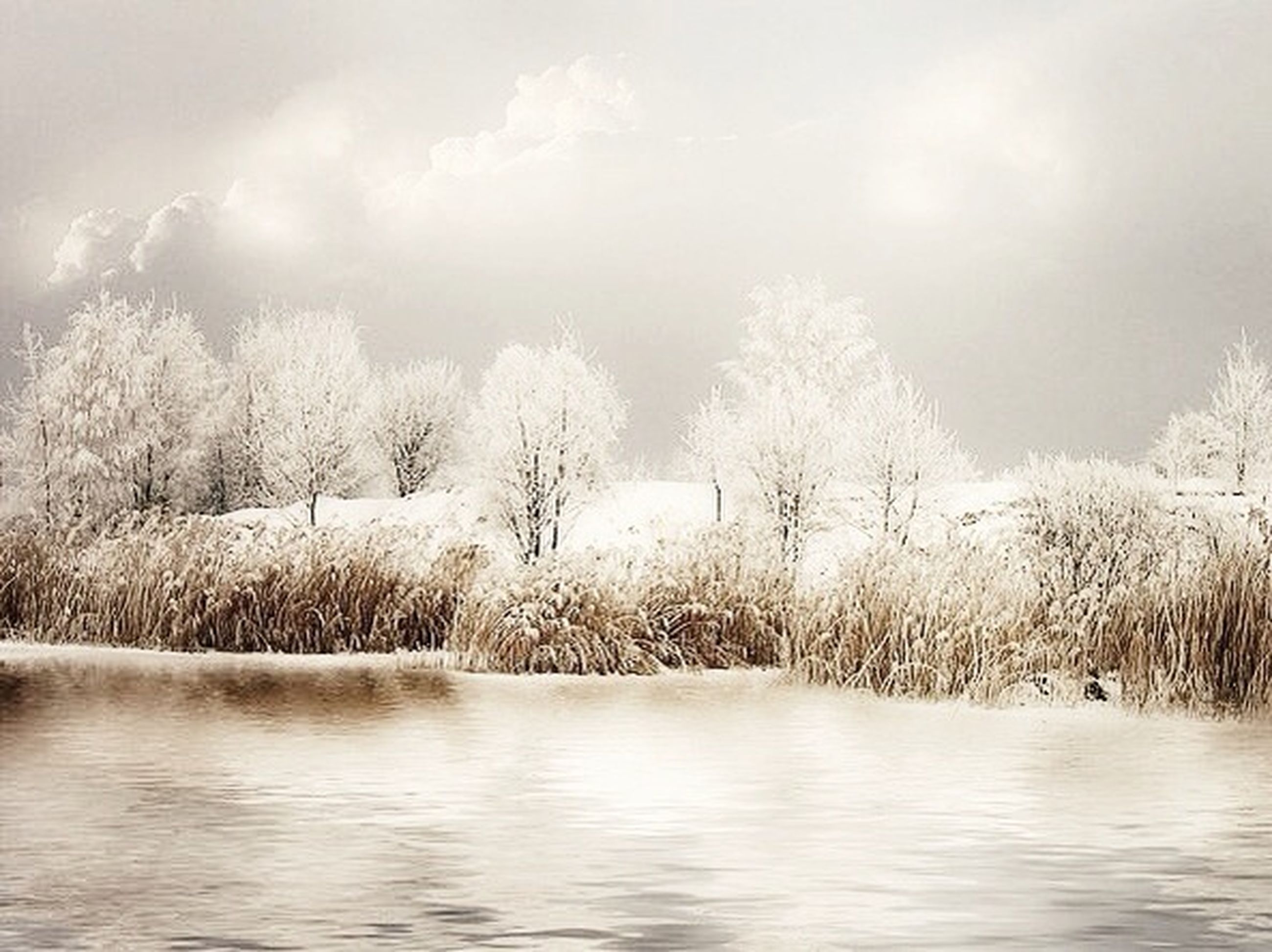 water, tranquility, tranquil scene, waterfront, sky, tree, lake, scenics, nature, beauty in nature, cloud - sky, weather, river, bare tree, winter, cloudy, cold temperature, non-urban scene, snow, day