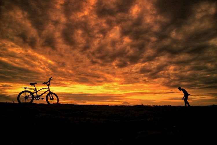 my sunset Tree Sunset Sport Bicycle Silhouette Cycling Dramatic Sky Tree Area Sky Cloud - Sky