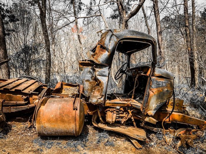 View of abandoned car in forest