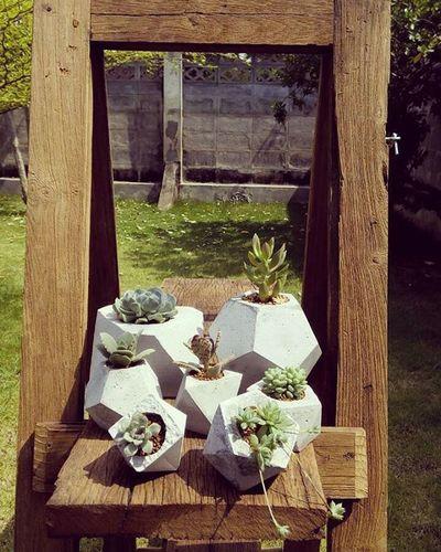 ต้นไม้น่ารักๆกับกระถางดิบๆแต่เท่ เรามีหลายรูปทรงให้เลือก ใครสนใจสั่งได้นะครับ Loft Rustic Design DIY Style Dib_te Cactusthailand Cactusmagazine Cactus Cactuslover Cactusclub Plants Garden Gardening กระถาง กระถางปูนเปลือย กระถางกระบองเพชร กระบองเพชร ไม้อวบน้ำ