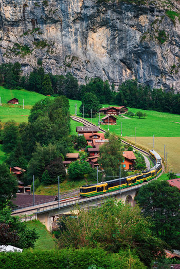 High angle view of train by trees on mountain