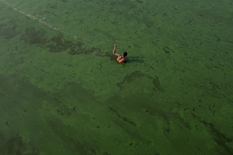 High Angle View Of Person Walking In Lake