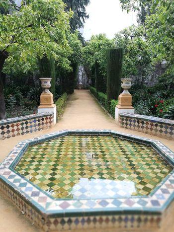 Sevilla Spain Miarma Palacio De Dueñas Creative Space Tree Water Drinking Fountain Park - Man Made Space Fountain Sky Garden Path Garden Botanical Park