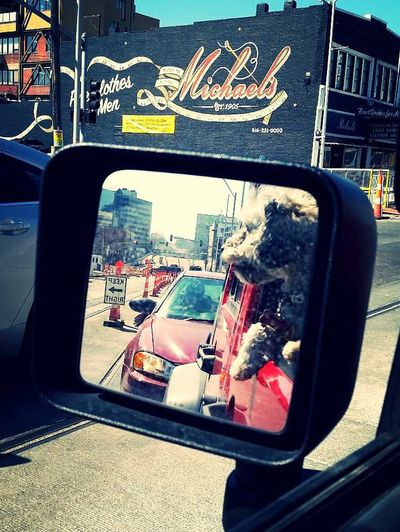 Bandit Kansas City Kansas City Missouri  Kcmo Kcmo Art Main Street Main Jeep Jeep Life Dog Dog Love Bichon Love Streetphotography Street Photography Cruising Cruising Around Bonding Time