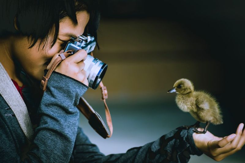 Close-up of girl photographing bird