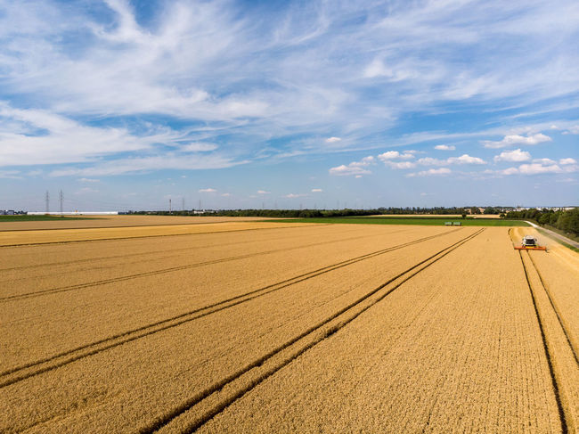 Harvesting Harvest Season Harvester Agriculture Cloud - Sky Environment Farm Field Grain Growth Harvest Harvesting Landscape Sunlight