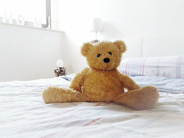 My Favorite Place Teddy Bear Bed Stuffed Toy Indoors  Home Interior Toy Pets Relaxation Lying Down At Home Domestic Life No People Interior Style Interior Design Quiet Moments Style Interior Views Home Is Where The Art Is Soft Focus Popular Shabby WhiteCollection Soft Teddy Lieblingsteil Pet Portraits
