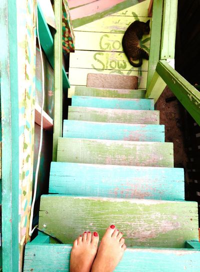 En la isla cariñosa Go Slow Steps Staircase Low Section Human Foot barefoot One Person Personal Perspective
