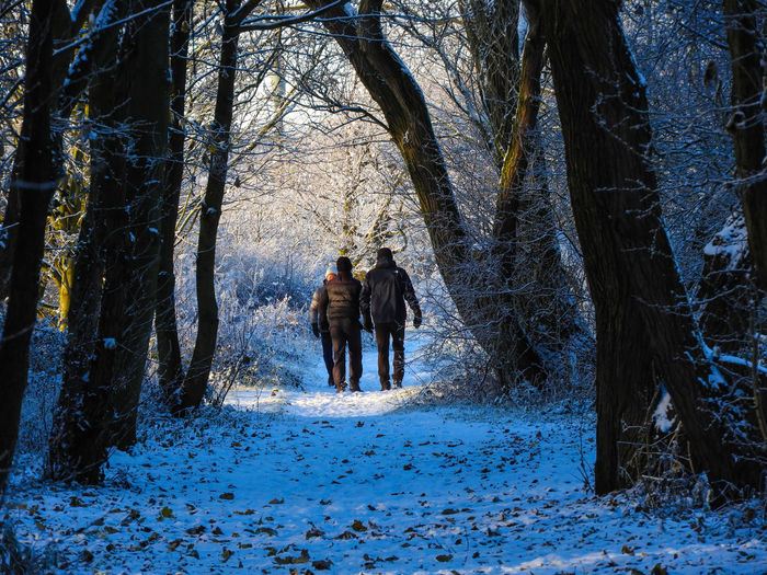 A brisk walk Real People Men Nature Togetherness Leisure Activity Full Length Tree Two People Beauty In Nature Snow Winter Outdoors