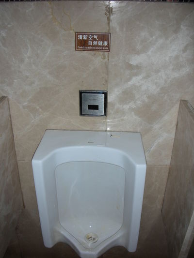 Indoors  Toilet Bathroom No People Urinal Hygiene White Color Home Wall - Building Feature High Angle View Absence Domestic Room Public Restroom Domestic Bathroom Flooring White Toilet Bowl Convenience Public Building Text Clean