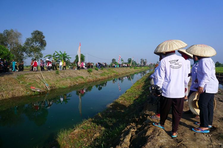 Reflections on water Capture Tomorrow Water Men Women Young Women Full Length Togetherness Hat Sky Asian Style Conical Hat Agricultural Field