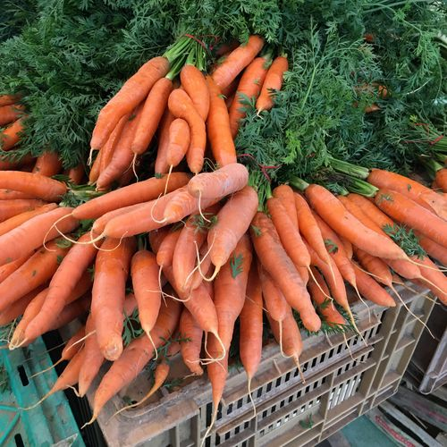 High Angle View Of Carrots In Crate For Sale At Market
