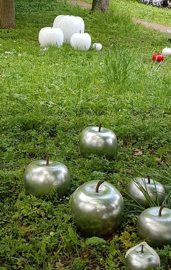 multicoloured decoration apples Decoration Apples Deco Apples White Color Silver Colored Red Color Grass Variation Garden Outdoor Photography Outdoors Garden Photography Grass Green Color