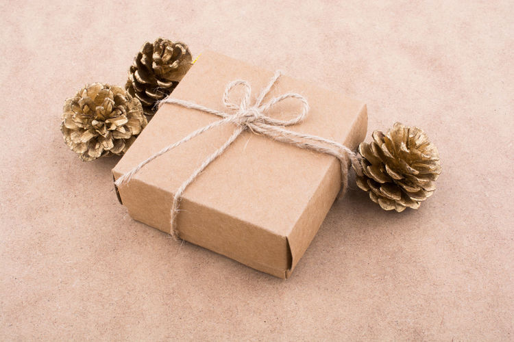 Close-up of christmas present with pine cones on table
