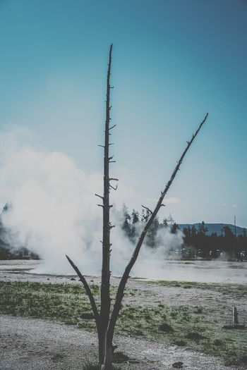 Forest Somking Yellow Stone Photography Sky Nature Plant Day No People Land Outdoors Field Environment Blue Architecture Water Smoke - Physical Structure Communication Built Structure Motion Spraying Cloud - Sky Scenics - Nature