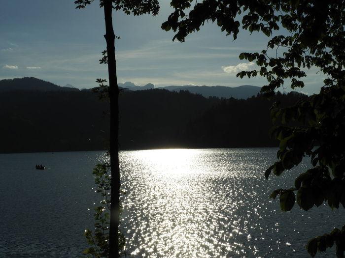 Reflection Lake Slovenia ❤ Slovenia Bledlake Bled Lake View Iloveslovenia Silhouette Nature