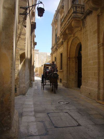 Architectural Column Architecture On The Road The Tourist Capture The Moment Europe Eyeemhistory Eyeemtravel  History Horse Malta Maltaphotography Mdina Mediterranean  Old Rider Tourist Travel Traveling Medieval Architecture Medievalcity Transport Romantic Picturing Individuality What A Wonderful World