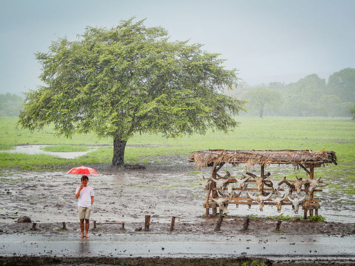 Full length of man holding umbrella while standing against tree during rainy season