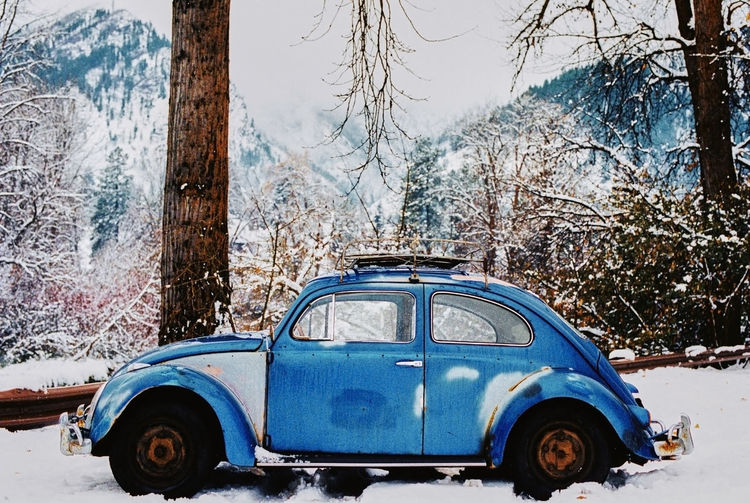 Tree Car Motor Vehicle Mode Of Transportation Snow Winter Cold Temperature Land Vehicle Trunk Tree Trunk Plant Transportation Day Nature Land Blue No People Outdoors