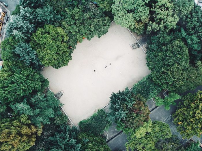 Dronephotography EyeEm Nature Lover EyeEm Best Shots Nature Photography Nature Greenery Green Green Color Summer Dronephotography Drone  Aerial Aerial View Park Trees Playground Ground No People Outdoors Beauty In Nature Plant Go Higher Visual Creativity Adventures In The City