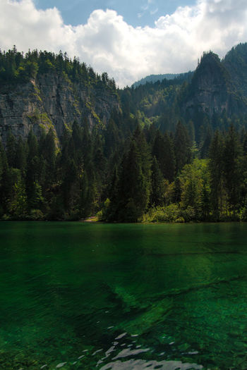 Scenic view of lake, trees reflecting in the emerald waters against dolomites