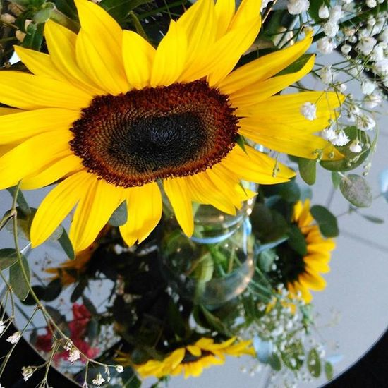 Today's bright and beautiful centrepieces for an engagement dinner. What a fitting flower for a celebratory occasion! Sunflowers Engagement Engagementflowers Tablecentrepieces Adelaideevents Adelaide Adelaideflowers Eventflowers Flowersforanyoccasion Adelaideposies Flower Cheerful Happyflowers Celebrate