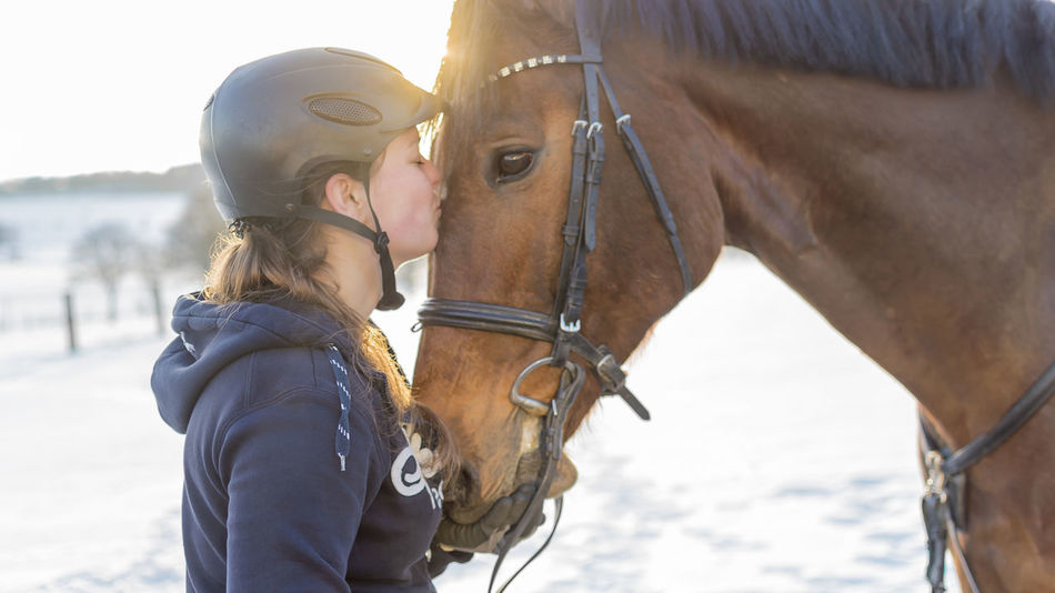 Woman rider kisses Hanoverian horse before snowy scenery Back Light Kiss Love Rider Romantic Values Winter Woman Affection Friendship Gelding Hanoverian Horse Leisure Activity Lens Flares Livestock Ride Rider's Clothes Rider's Court Rider's Helmet Snow Snowy Scenery Spare Time Sport Young Women