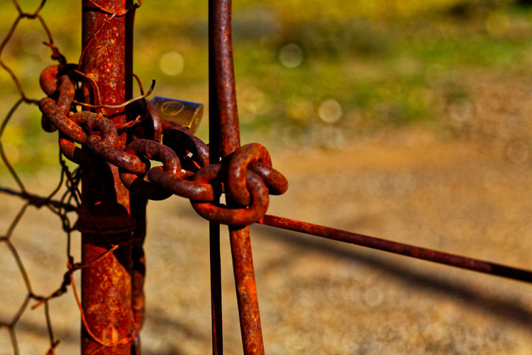 Close-up of rusty fence