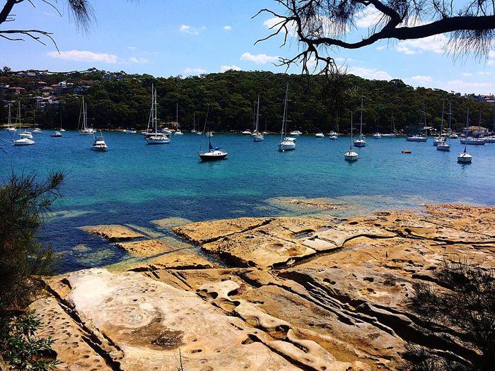 Enjoying The Sun Sailboat Paradise Manly