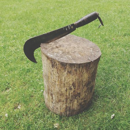 Roll up your sleeves. At Work Wood - Material Wood Work Billhook Log Lumberjack Objects Green Forest Life High Angle View Green - Golf Course Field Grass Green Color Greenery Grassland Wooden