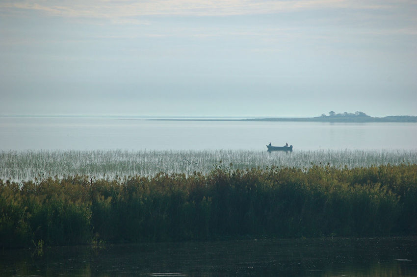 Two fishermen in a small boat on a lake under foggy conditions at Lake Okeechobee, Florida, USA. USA Beauty In Nature Day Fishermen Florida Lake Lake Okeechobee Nature Nautical Vessel No People Outdoors Scenics Sky South Bay Tranquil Scene Tranquility Tree Water
