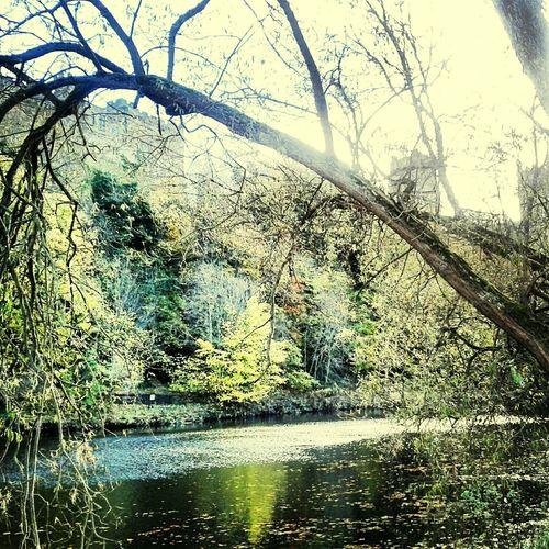 Enjoying The View River Bank
