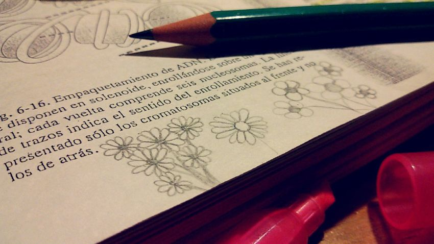 When studying becomes boring Drawing Art Creativity Flowers Pencil Book