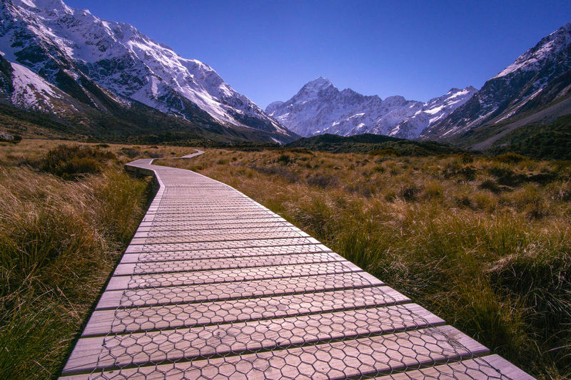 Wooden walkway to Mount Cook Mountain Scenics - Nature Beauty In Nature Environment Sky Mountain Range Landscape Tranquility Tranquil Scene Footpath Direction Nature Non-urban Scene The Way Forward Snow No People Grass Plant Day Snowcapped Mountain Outdoors Diminishing Perspective Mountain Peak