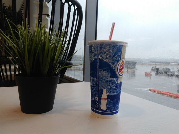 Cocacola Burger King Green Plant Table Plant Indoors  Table Drinking Glass No People Water Day Nature