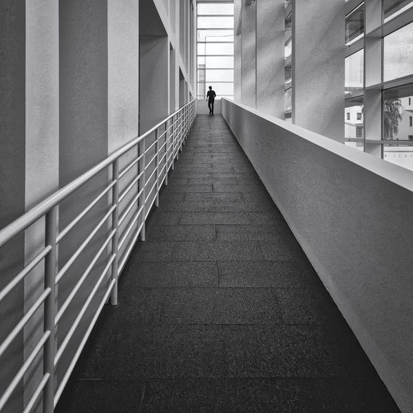 201 / 365 Leading Lines Leadinglines MACBA Museum In Barcelona Scale  Silhouette Architecture Built Structure Day Hand Rail Indoors  Men One Person People Railing Real People The Way Forward