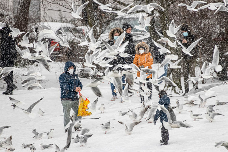 People standing on snow covered tree