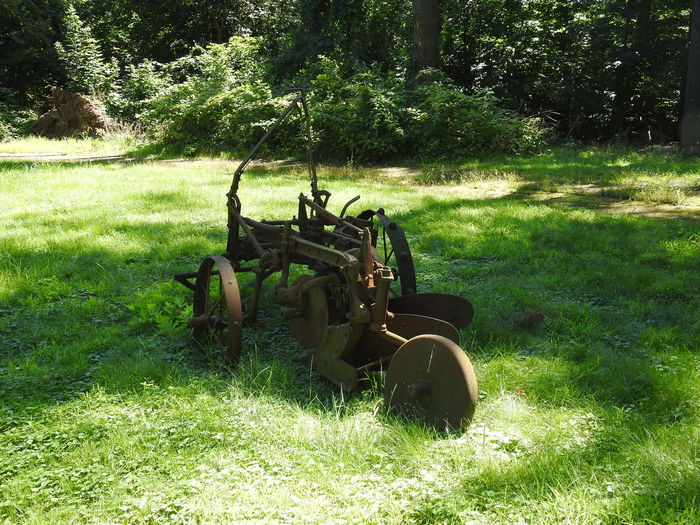 Agricultural Machinery Agriculture Beauty In Nature Combine Harvester Day Farm Equipment Field Grass Green Color Landscape Nature No People Old Farm Machinery Old Plowing Machine Outdoors Rabbit Rural Scene Rusty Farm Equipment Rusty Gold Rusty Plow Sunlight